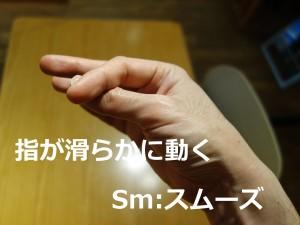 FT_Sm